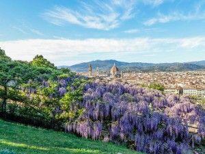 последний тур италии, экскурсии во флоренции