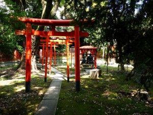 япония экскурсии цены, гид в токио