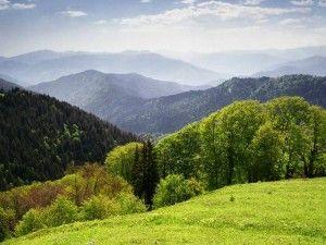 телави грузия достопримечательности, экскурсии в тбилиси