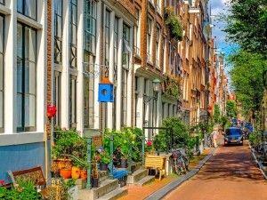 туры в амстердам май, экскурсии в амстердаме