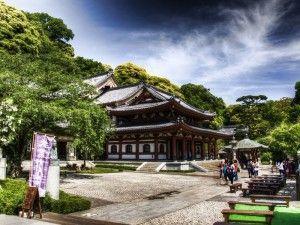программа экскурсии по японии, гид в токио