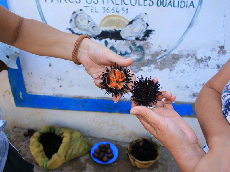 экскурсии из агадира в касабланку, гид в касабланке