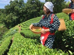 достопримечательности токио на английском, экскурсии в токио