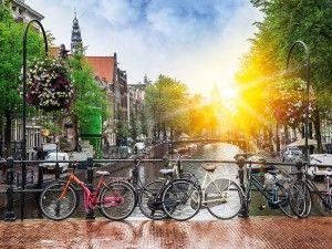 индивидуальный гид амстердам, экскурсии в амстердаме