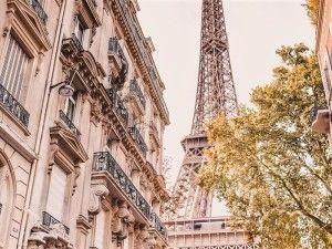 экскурсия по луаре из парижа, гид в париже