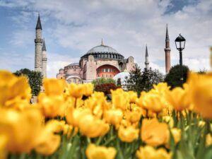 стоимость экскурсии в стамбуле 2019, экскурсии в стамбуле